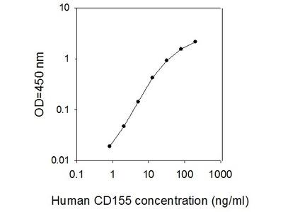 Human CD155/PVR ELISA