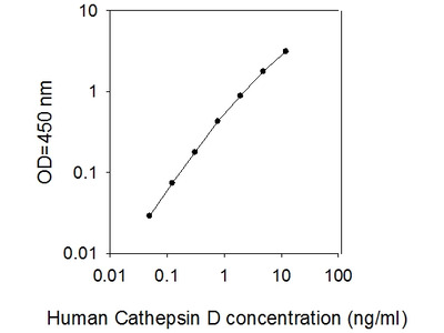 Human Cathepsin D ELISA
