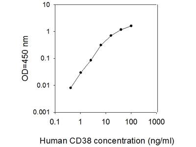Human CD38 ELISA