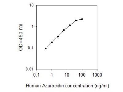 Human Azurocidin/CAP37/HBP ELISA
