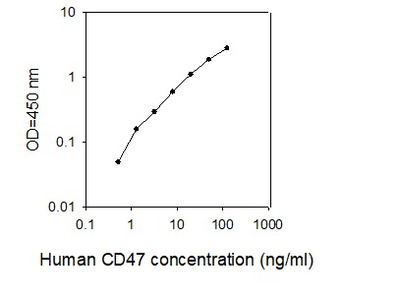 Human CD47 ELISA