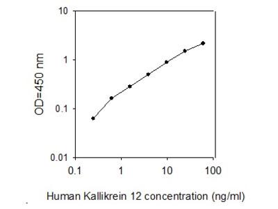 Human Kallikrein 12 ELISA