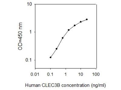 Human CLEC3B/Tetranectin ELISA