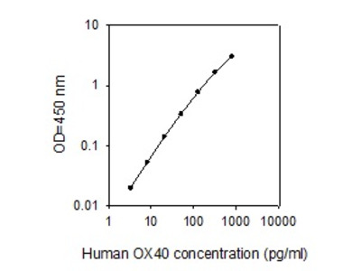 Human OX40/TNFRSF4 ELISA