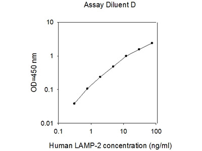 Human LAMP2/CD107b ELISA