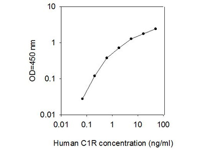 Human C1R/Complement Component C1r ELISA