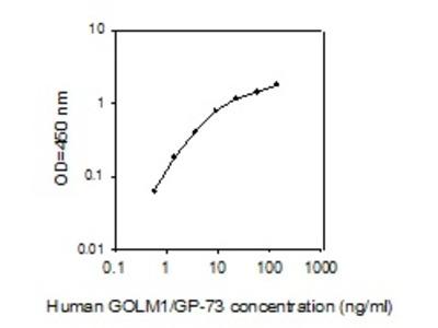 Human GOLM1/GP-73 ELISA