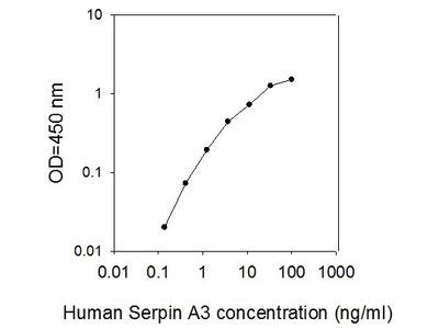 Human Serpin A3/Alpha-1-Antichymotrypsin ELISA