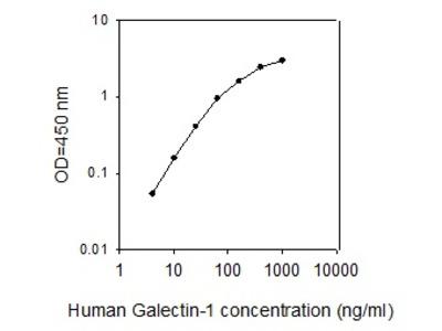 Human Galectin-1 ELISA