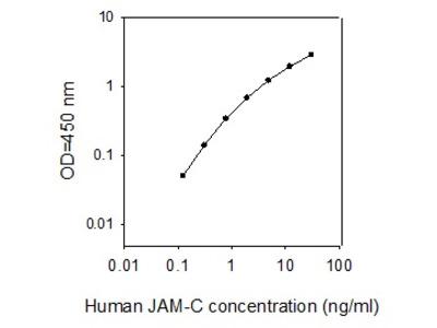 Human JAM-C ELISA