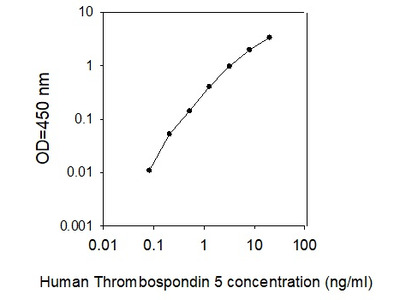 Human Thrombospondin-5/COMP ELISA