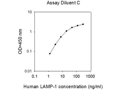 Human LAMP1/CD107a ELISA