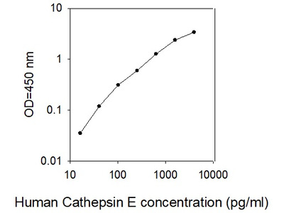 Human Cathepsin E ELISA