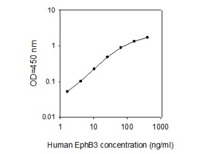 Human EphB3 ELISA