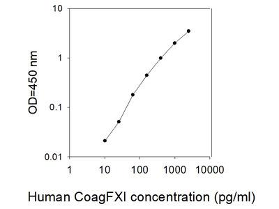 Human Coagulation Factor XI ELISA