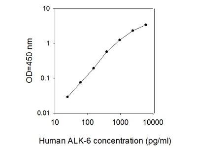 Human ALK-6/BMPR-IB ELISA