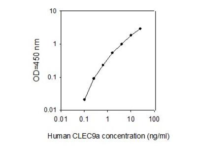 Human CLEC9A ELISA