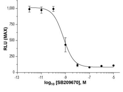 Anti-Nicotinic Acetylcholine Receptor alpha7 (CHRNA7) (extracellular)-ATTO Fluor-633 Antibody