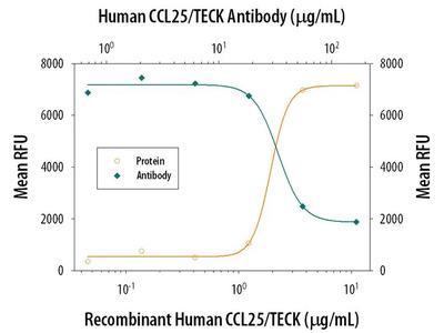 TECK Antibody