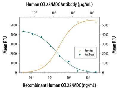 MDC Antibody