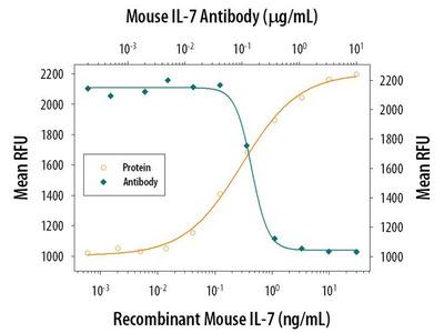 IL-7 Polyclonal Antibody