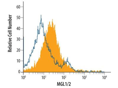 CD301a/b Polyclonal Antibody