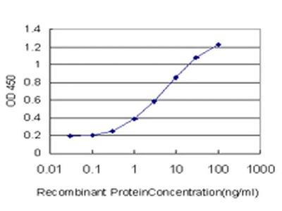 PIMT Monoclonal Antibody (3F1)