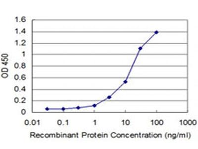 FBXL8 Monoclonal Antibody (2E1)