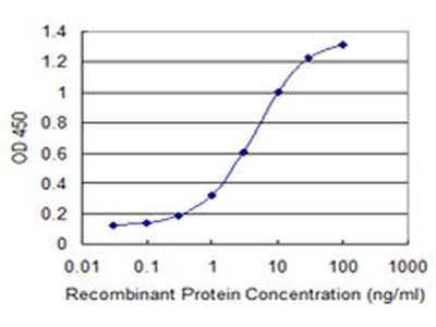 CaBP8 Monoclonal Antibody (2G2)