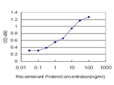 Annexin A10 Monoclonal Antibody (1F9)