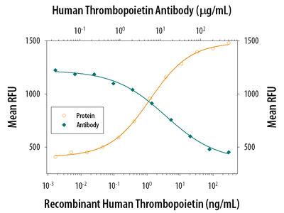 Thrombopoietin Monoclonal Antibody (34817)