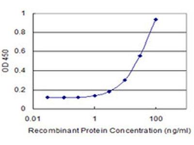 TAF13 Monoclonal Antibody (2B3)