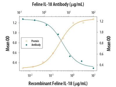 IL-18 Polyclonal Antibody