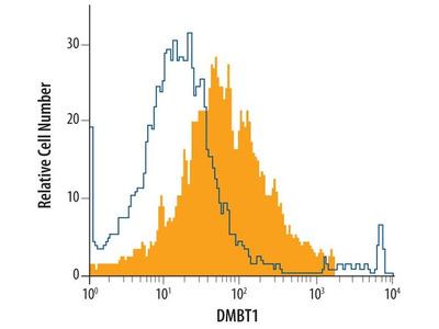 GP340 Monoclonal Antibody (548031)