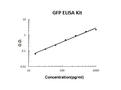 GFP PicoKine ELISA Kit