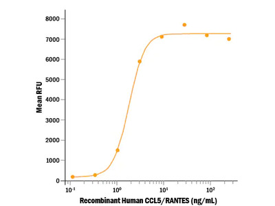 CCL5 / RANTES Protein