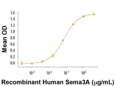 Semaphorin 3A Fc Chimera Protein