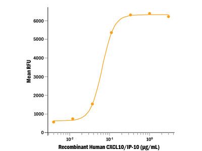 Recombinant Human CXCL10 / IP-10 Protein, CF