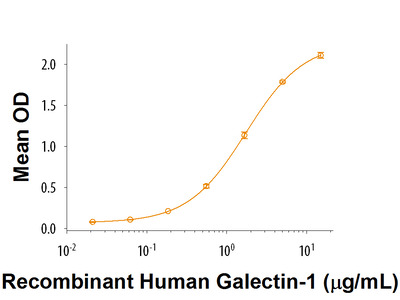 AICL / CLEC-2B Fc Chimera Protein