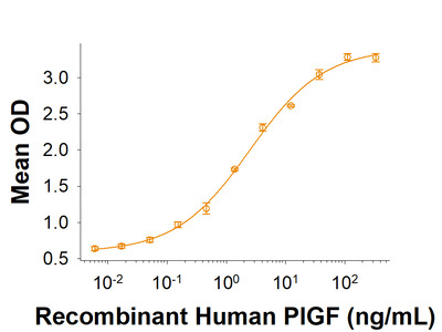Recombinant Human PlGF Protein