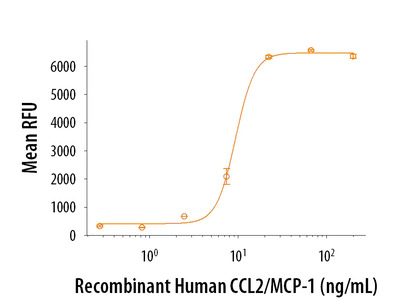 CCL2 / JE / MCP-1 Protein
