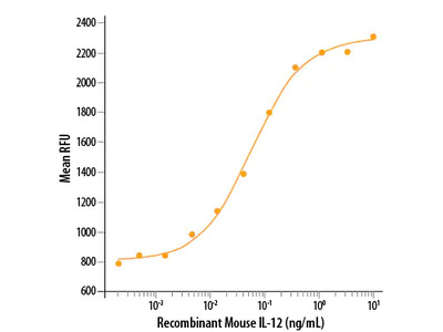 IL-12 Protein