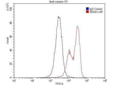 G-CSFR Polyclonal Antibody