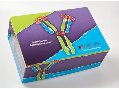 H5N1 Influenza Antibody Sampler Kit