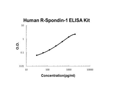 Human R-Spondin-1 PicoKine ELISA Kit