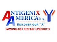 Antigenix America Inc.