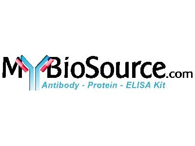 Barbiturate Direct ELISA Kit