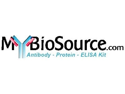 Bovine Cyclin-dependent kinase inhibitor 1C (CDKN1C) ELISA Kit